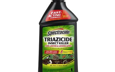 Spectracide Triazicide 95829 review
