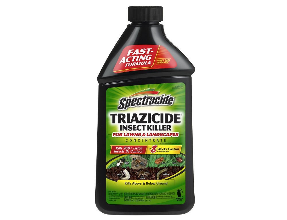 Spectracide Triazicide 95829 Review | INSECT COP
