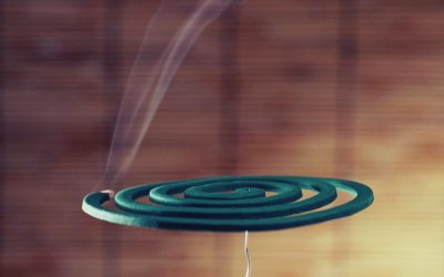 What is mosquito coil and does it work?