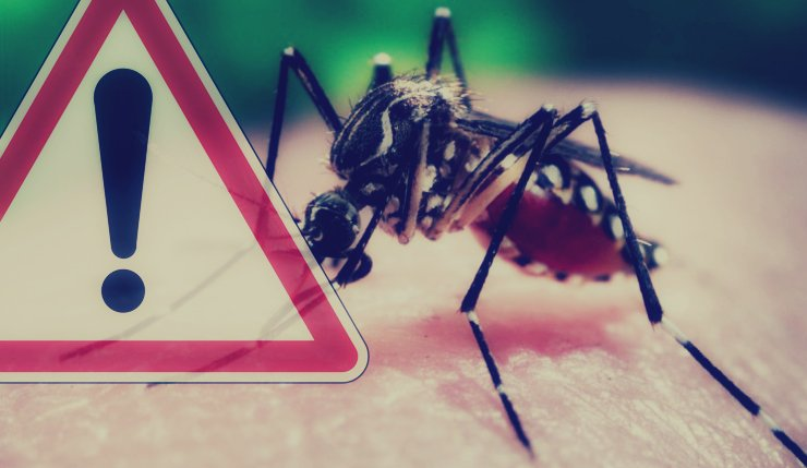 Mosquito-borne disease that threatens the World – Zika Virus
