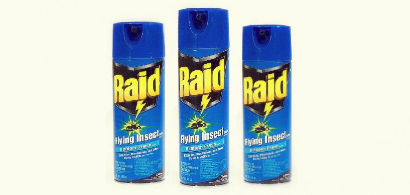Raid Flying Insect Killer Insecticide Review Insect Cop