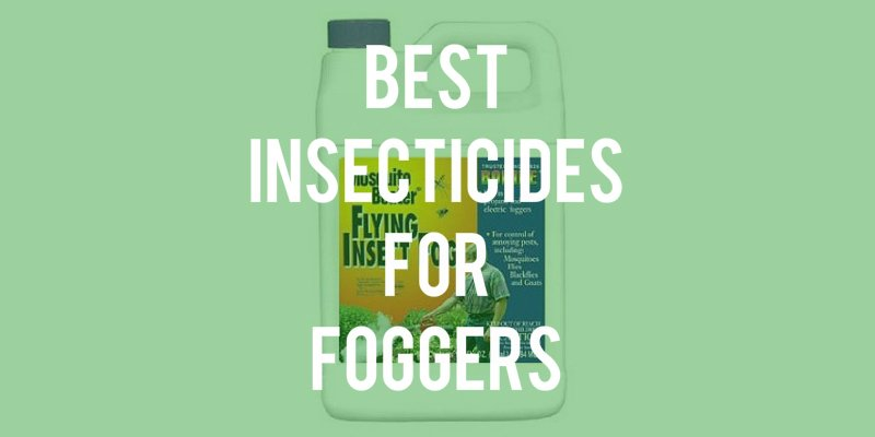 best insecticide