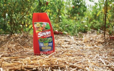 Sevin Insect Killer Insecticide Review