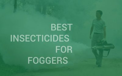 Best Insecticides for Foggers that are Surprisingly Effective