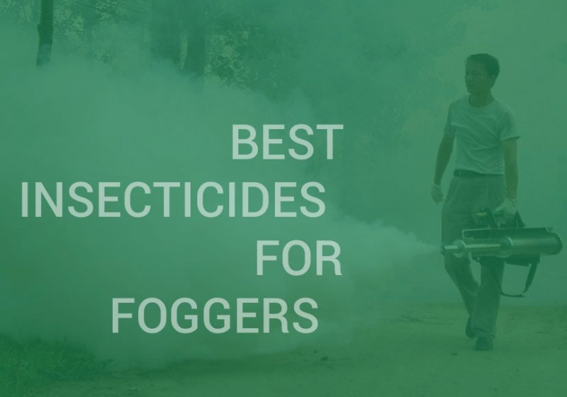 Best Insecticides for Foggers