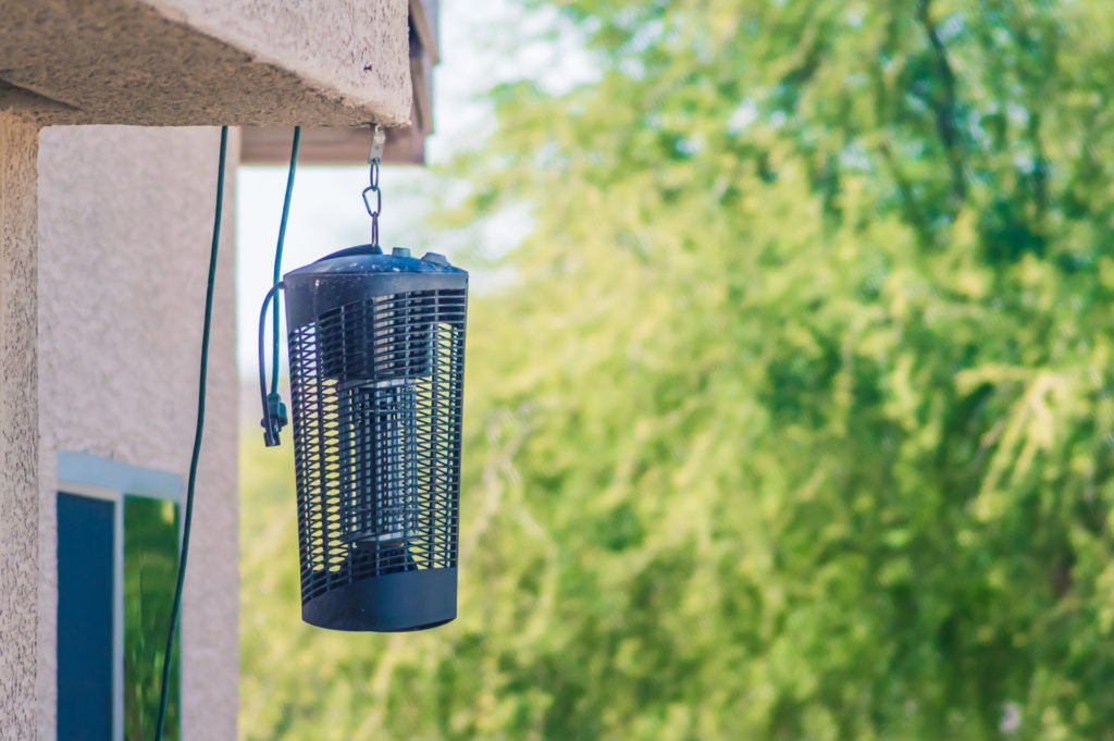 electric bug zapper hanging in a yard
