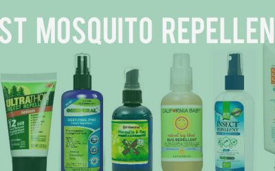 12 Best Mosquito Repellents to Protect Against Mosquito-borne Diseases