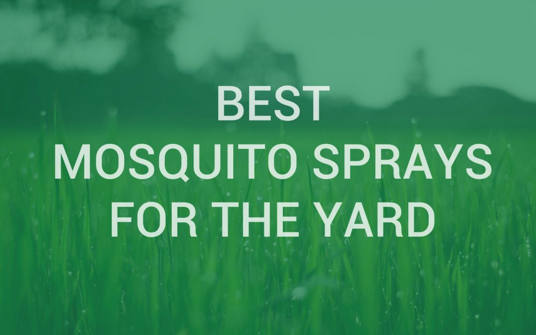 Mosquito-proof Your Backyard With These Best Mosquito Sprays for Yard