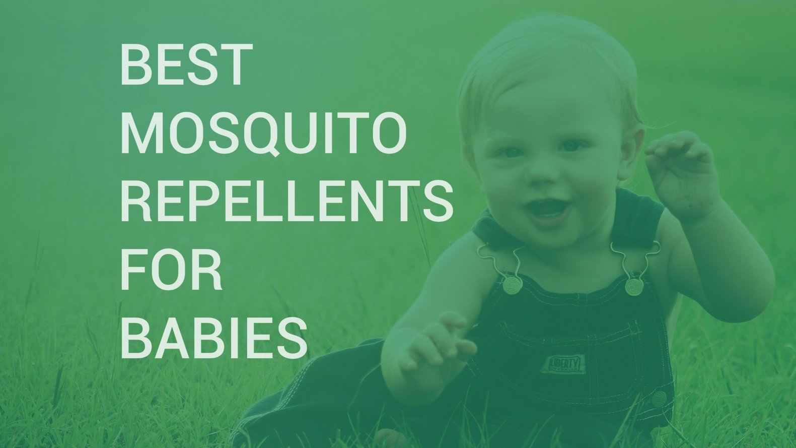 foto de 10 Best Mosquito Repellents for Babies INSECT COP