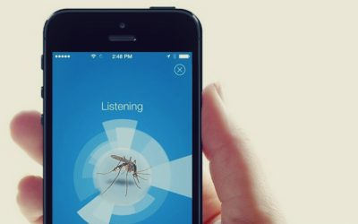Mosquito Shazam in works