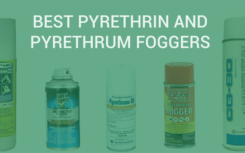 Pyrethrin and Pyrethrum Foggers
