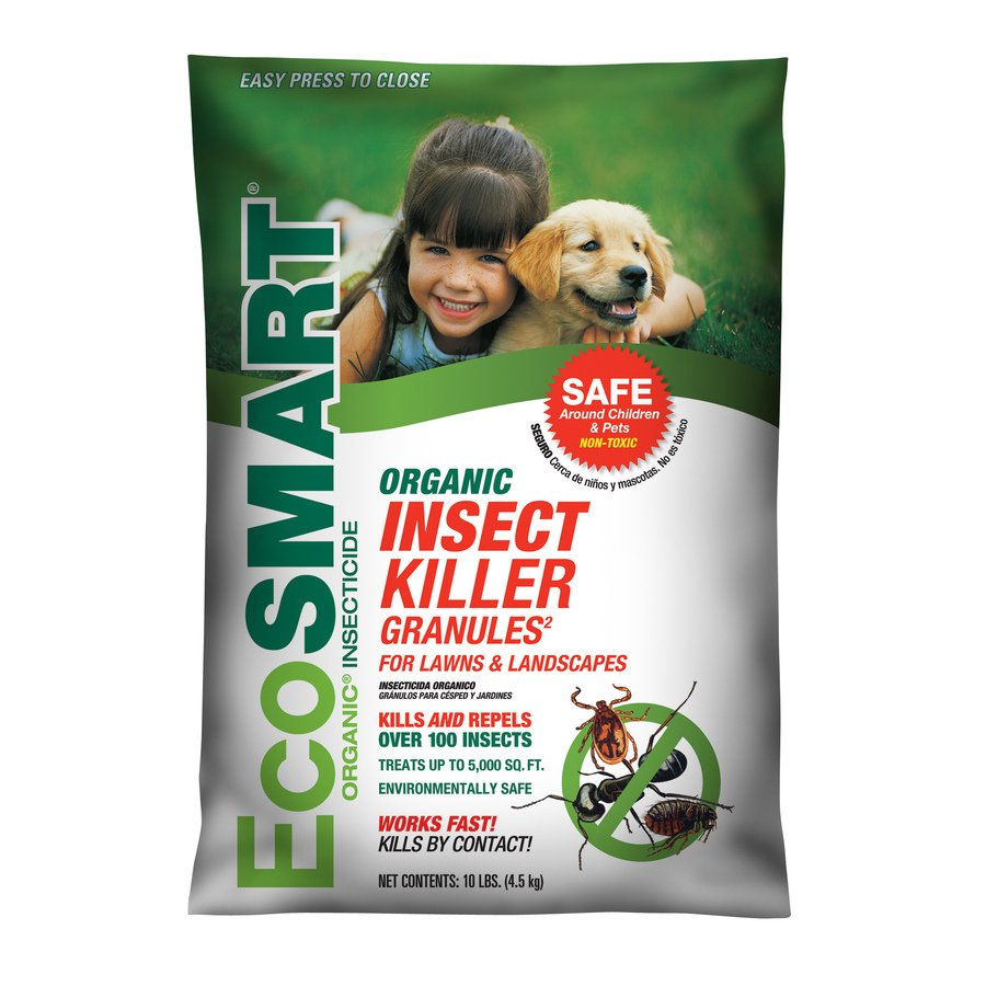 best lawn insect killer