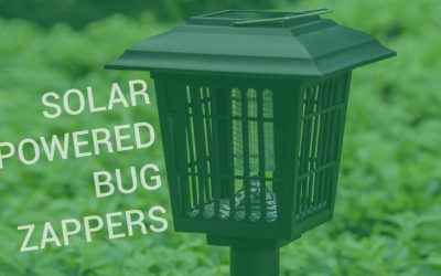 Best solar powered bug zappers. Are they good as mosquito killers?
