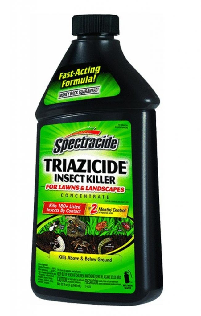 lawn insecticide