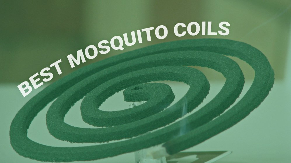 Best mosquito coils and mosquito rings