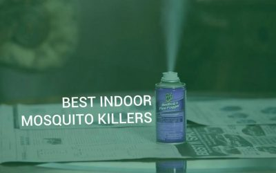 Best indoor mosquito killers. Bug sprays for house and indoor foggers