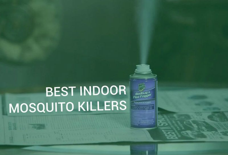 Best indoor mosquito killers