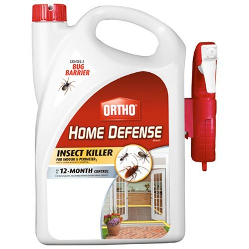 Best Indoor Mosquito Killers Insect Cop