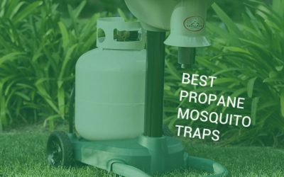 5 Best Propane Mosquito Traps Tested