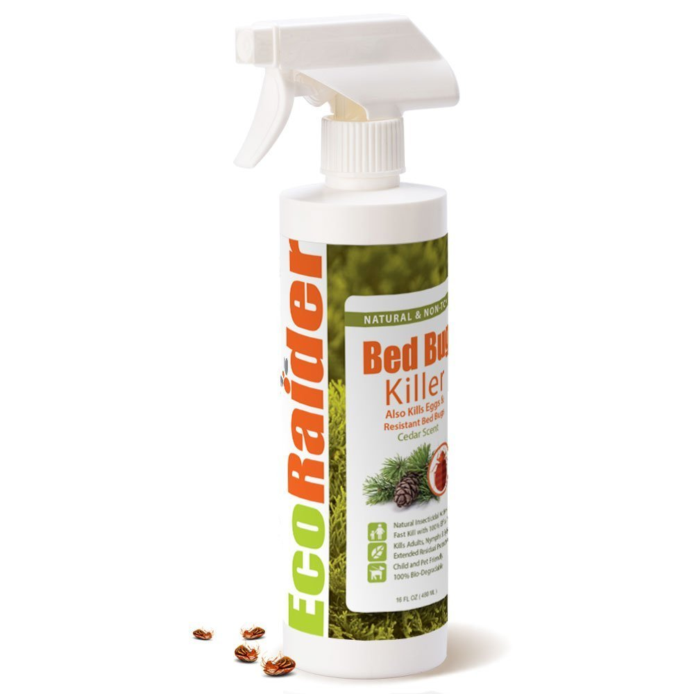 Eco Friendly Bed Bug Killer