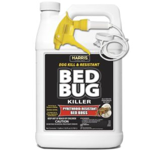 ecoraider bed bug spray