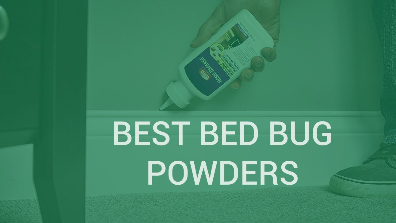 best bed powder bug powders cop insect