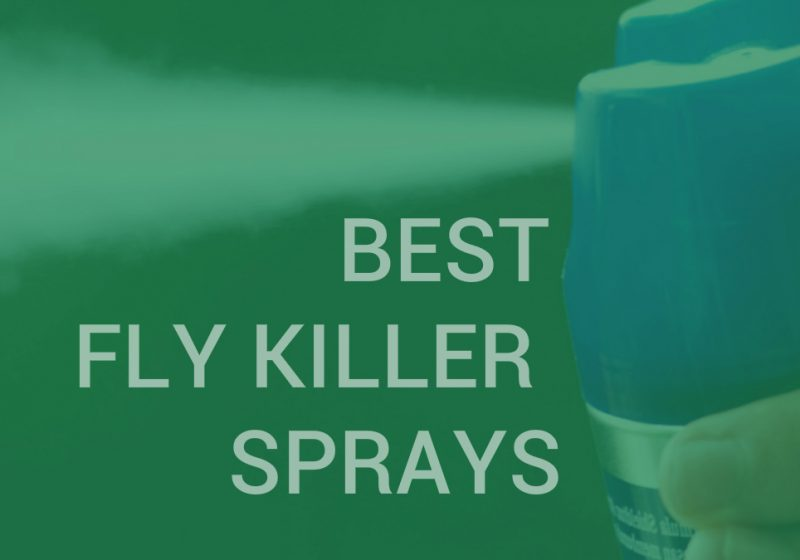 fly killer sprays