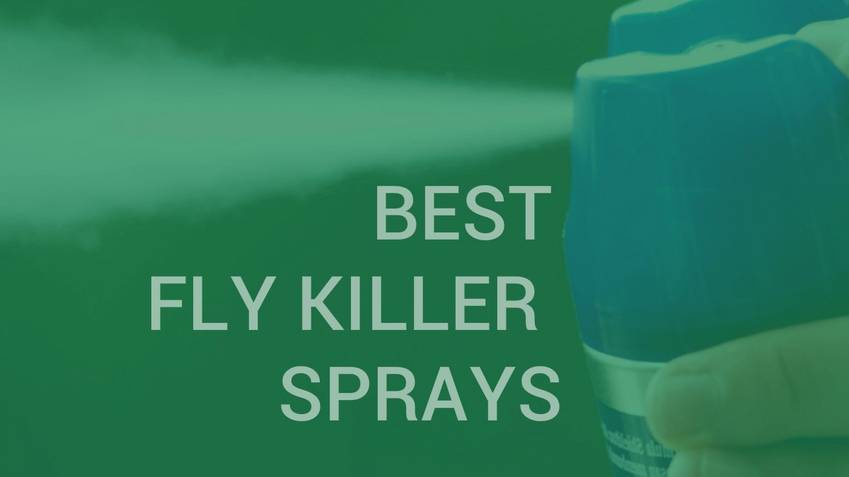 Best fly killer sprays | INSECT COP