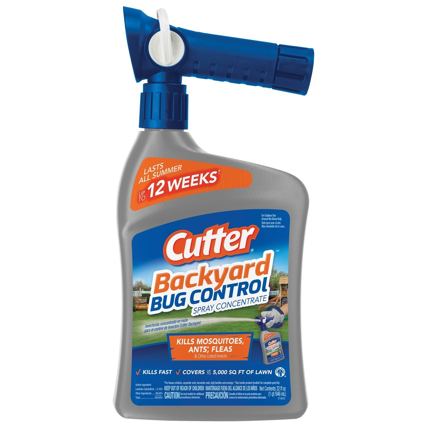 Best Ant Killer Sprays Insect Cop