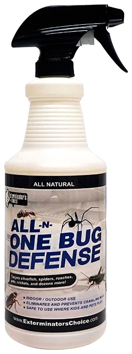 If You Have Been Looking For The Best Spider Spray Indoors Your Search Might Come To An End Are Effective Insect