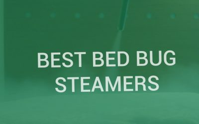 Best Bed Bug Steamers