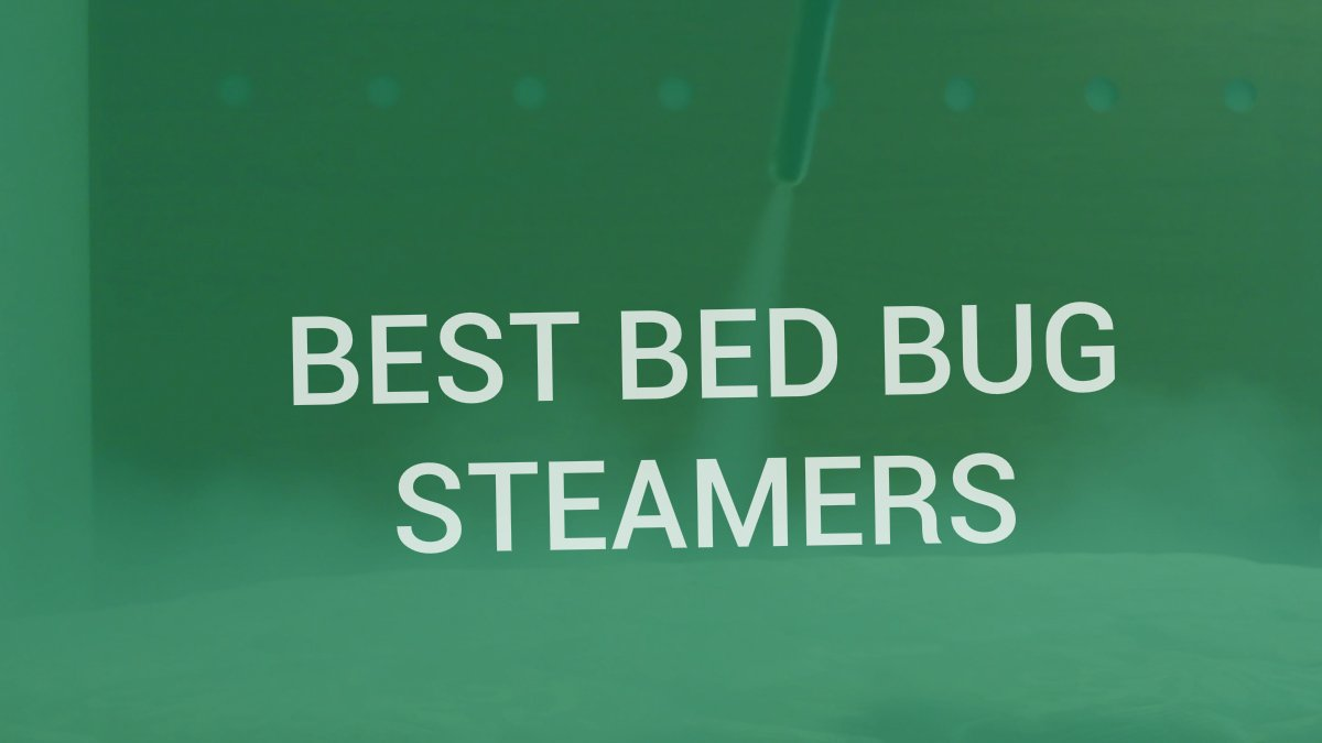 watch steamer review brio bed youtube bug reliable