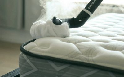 Steaming for bed bugs? Is it an efficient way to kill bed bugs?