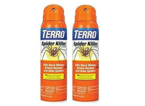 When It Comes To Repelling And Killing Spiders This Indoor Spider Spray Is The Way Go If You See A Want Kill Just On