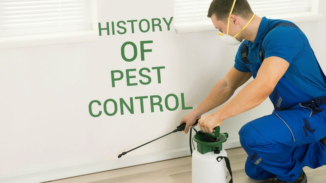 The History of Pest Control