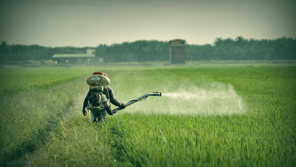 Side Effects of Pest Control Chemicals