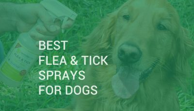flea and tick spray for dogs
