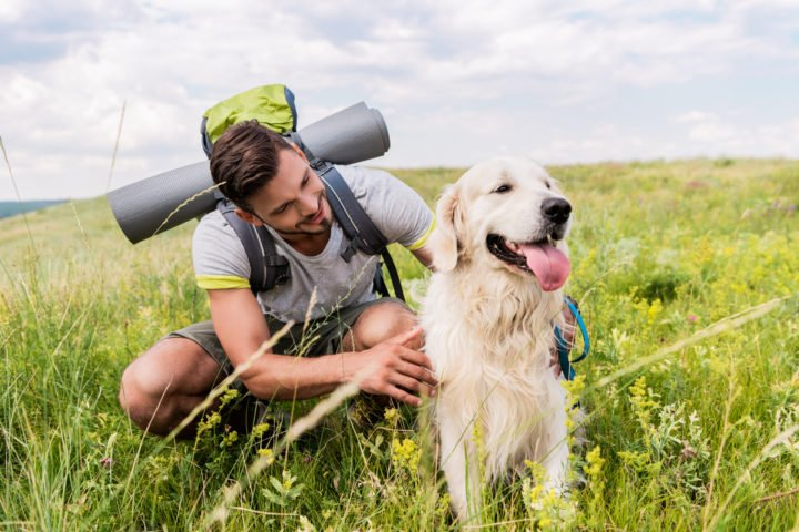 man and a dog in a field
