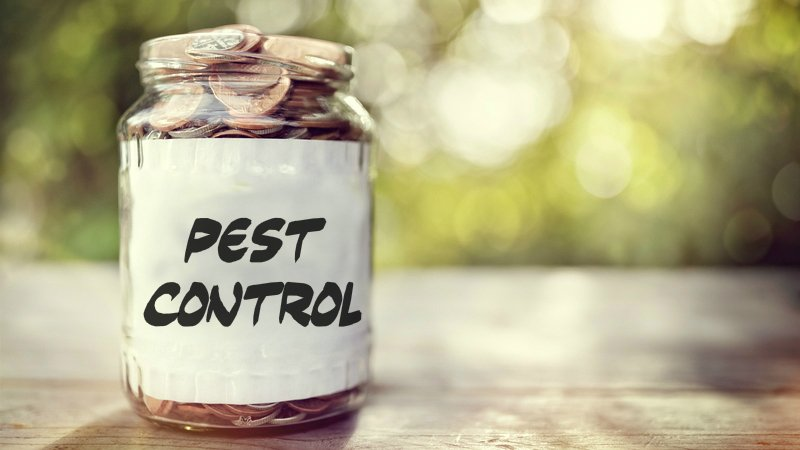 Costs of Pest Infestation