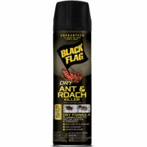 Best Roach Sprays | INSECT COP