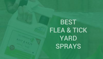 flea and tick yard spray