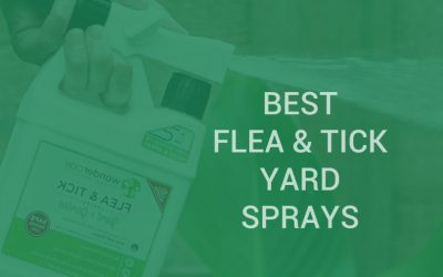 Best flea and tick yard sprays