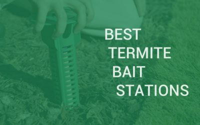 Best termite bait stations