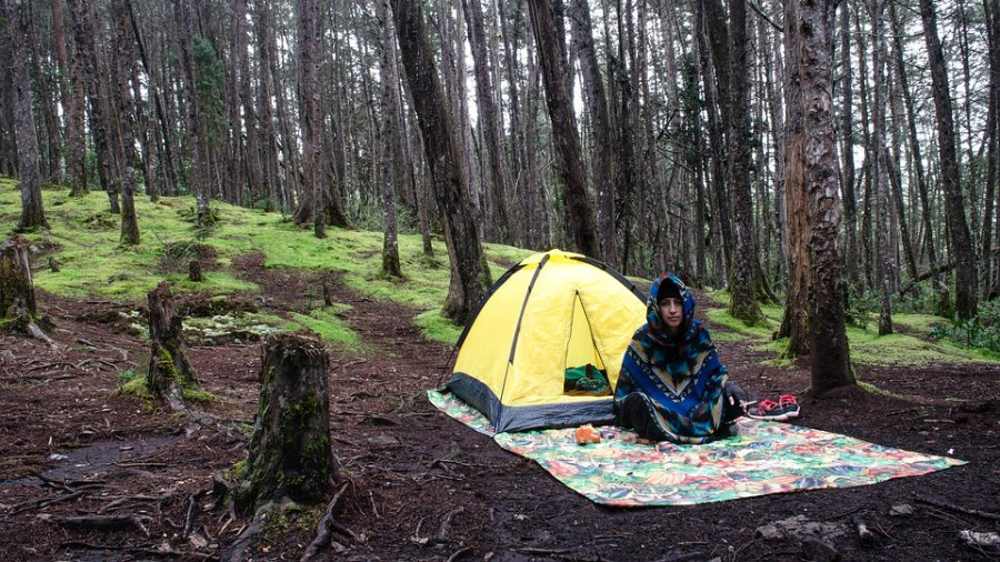 10 Tips to Protect Yourself from Bugs While Camping