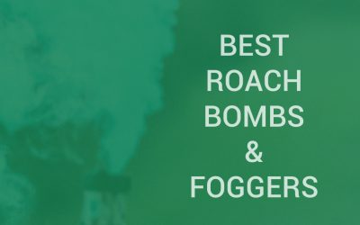 Best roach bombs and foggers