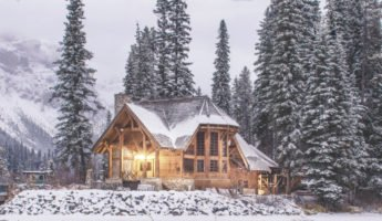 winterize your home against pest