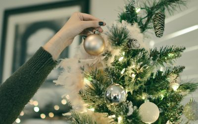 Pests in Christmas decorations: what to do?