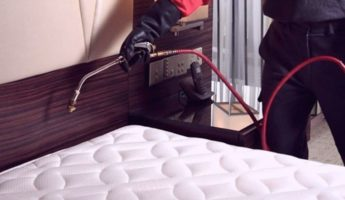 Prepare Your Home for a Bed Bug Treatment