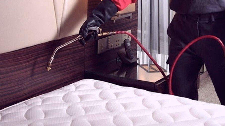 How to Prepare Your Home for a Bed Bug Treatment?