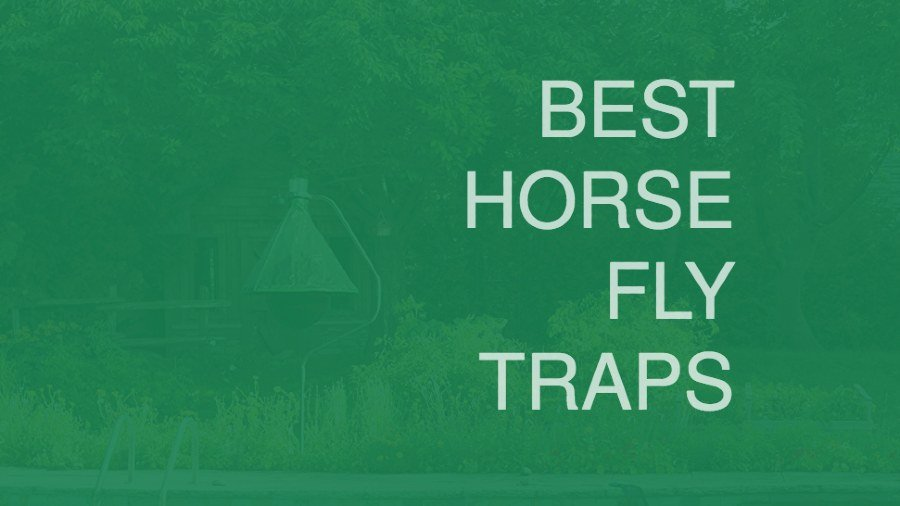 Best Horse Fly Traps